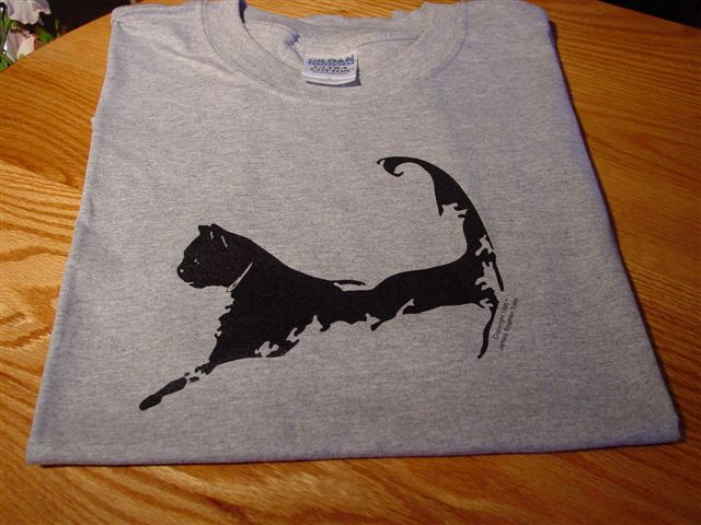 Cape Cat Map T-Shirt (Wellfleet Oyster Steel-Gray)